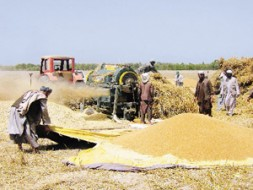 """""""The agriculture sector has been neglected due to the lack of resources"""""""