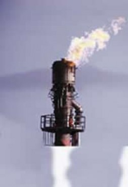 """""""Natural gas is likely to be a dominant energy source by 2025."""""""
