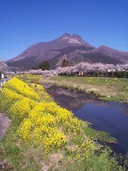 Yufuin in Oita Prefecture